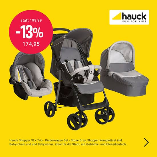 Kinderwagen Trio SLX