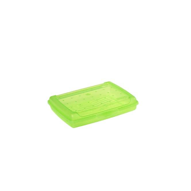 Brotdose - grün - 17 x 13 x 3,5 cm