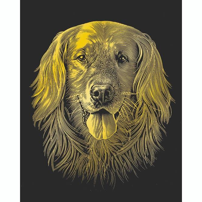 Kratzbild - Gold mit Rahmen - verschiedene Tiermotive