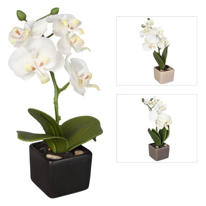Orchidee - ca. 18 cm - 1 Stück