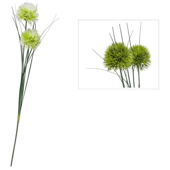 Allium - ca. 48 cm - 1 Stück