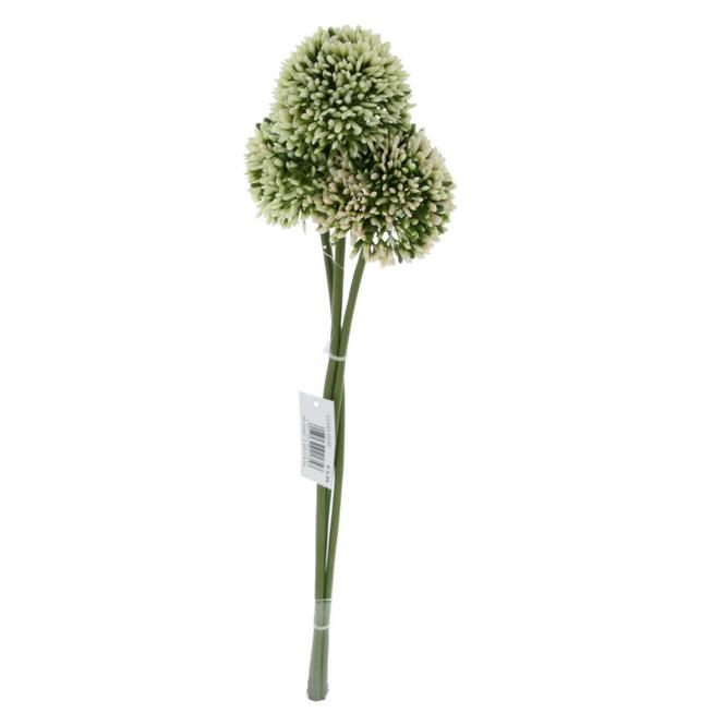Allium - ca. 46 cm