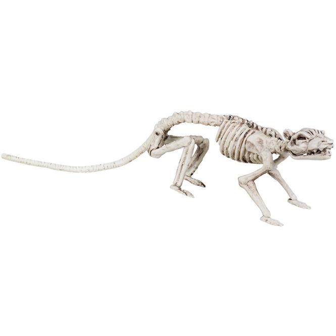 Rattenskelett - 35 cm