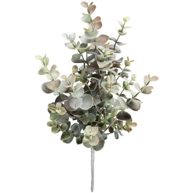 Eukalyptuszweig - 35 cm