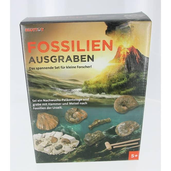 Fossilien ausgraben