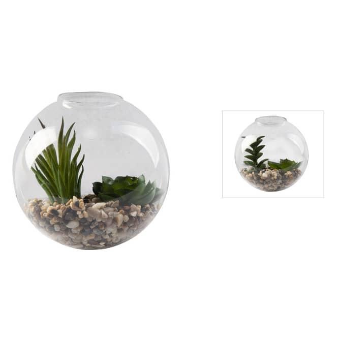 Dekokugel mit Sukkulente - aus Glas - ca. 11,5 x 9 x 11,5 cm - 1 Stück