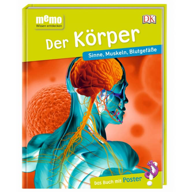 memo - Wissen entdecken - Der Körper - Sinne, Muskeln, Blutgefäße