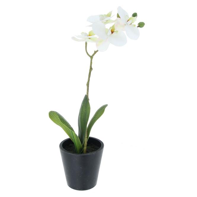 Orchidee - ca. 40 cm - weiß