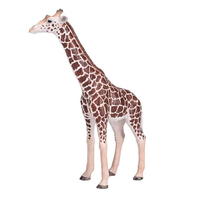 Besttoy Wildlife - Giraffe männlich - Spielfigur 381008