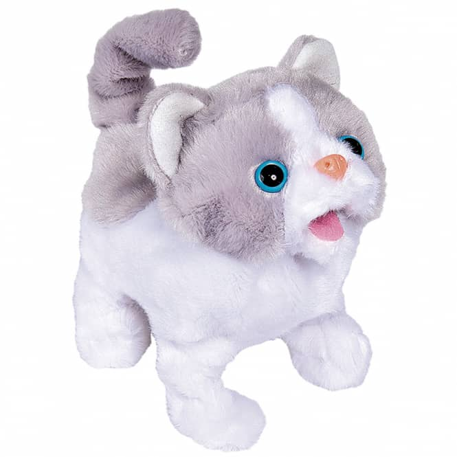 ChiChi LOVE - Little Cat