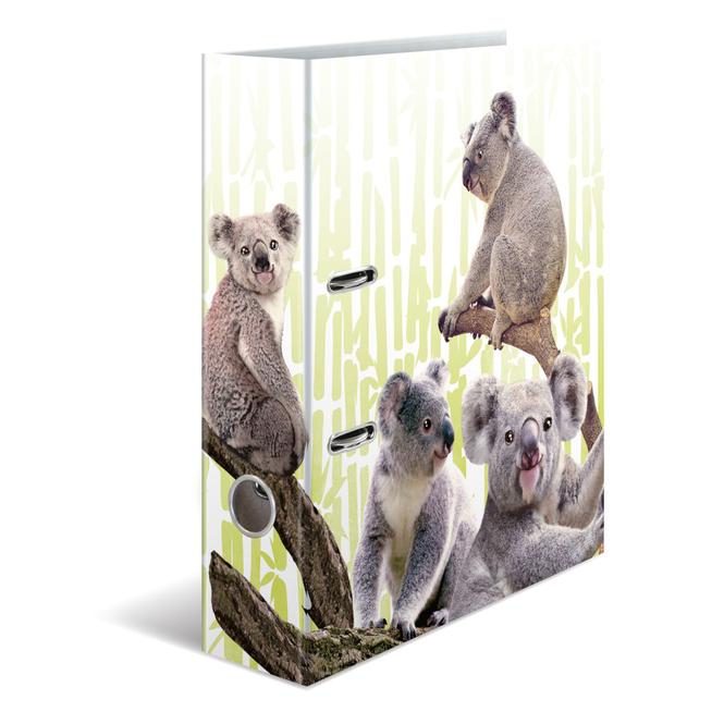Motivordner DIN A4 - Koalafamilie