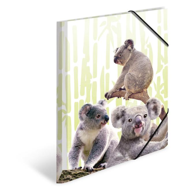 Sammelmappe DIN A4 - Koalafamilie
