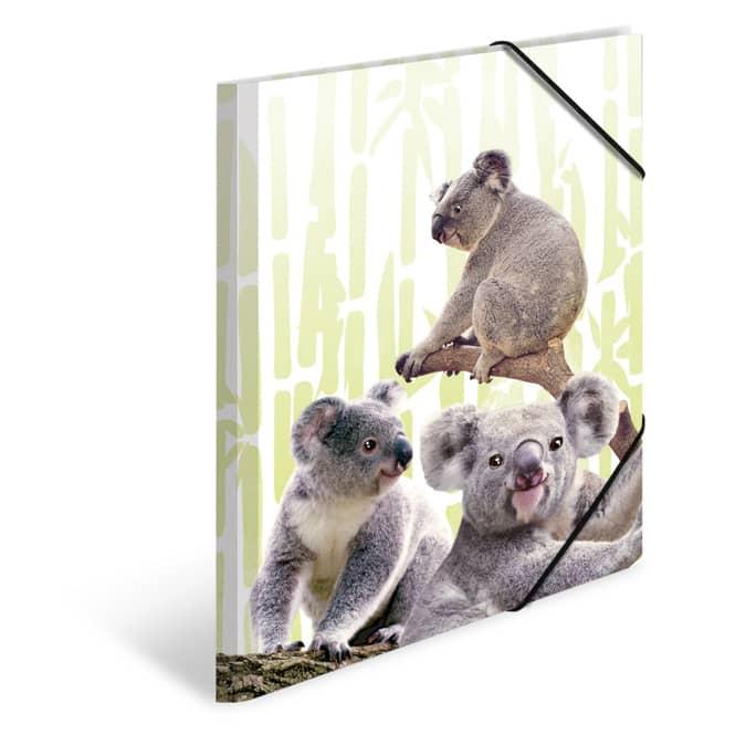 Sammelmappe DIN A3 - Koalafamilie