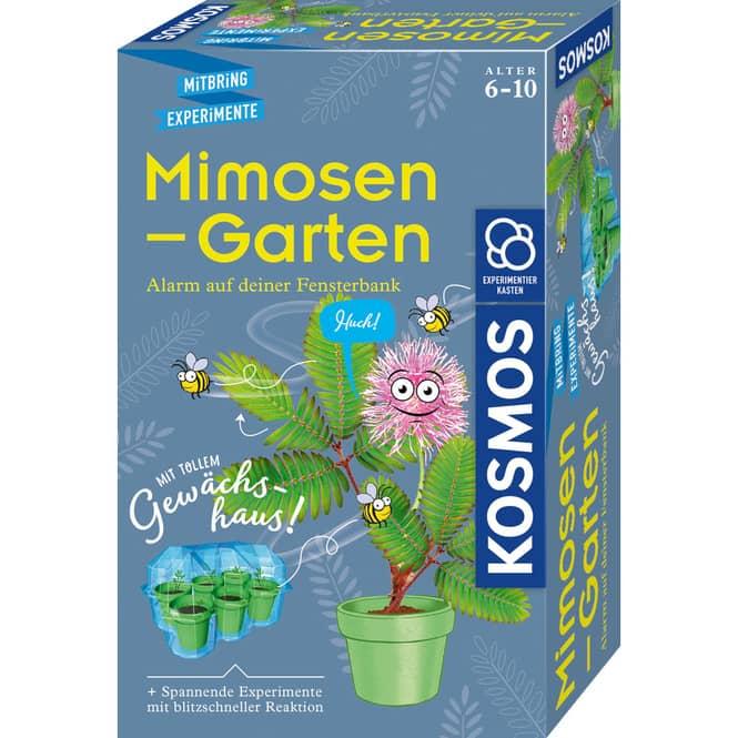 Mimosen-Garten - Mitbringexperimente