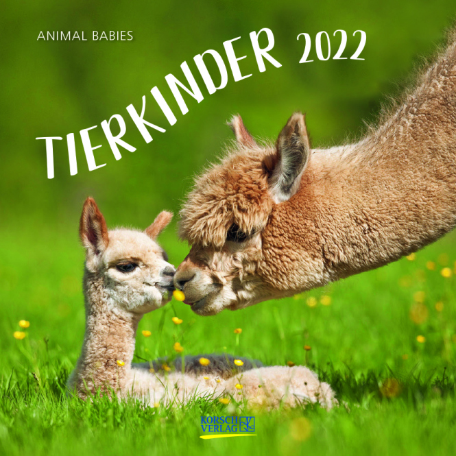 Kalender - Tierkinder 2022