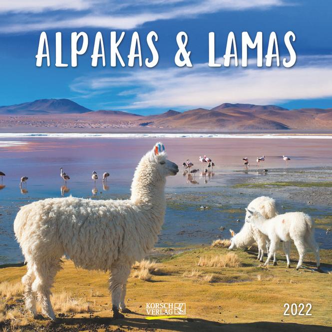 Kalender - Alpakas & Lamas 2022