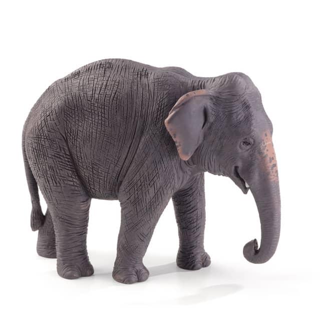 Besttoy Wildlife - asiatischer Elefant - Spielfigur 387266