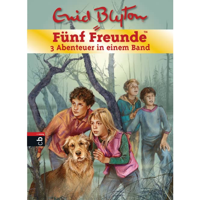 Fünf Freunde - Sammelband 1