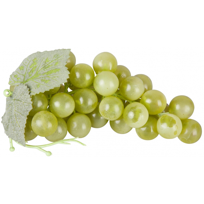 Weintraubenrebe - 14 cm - in grün