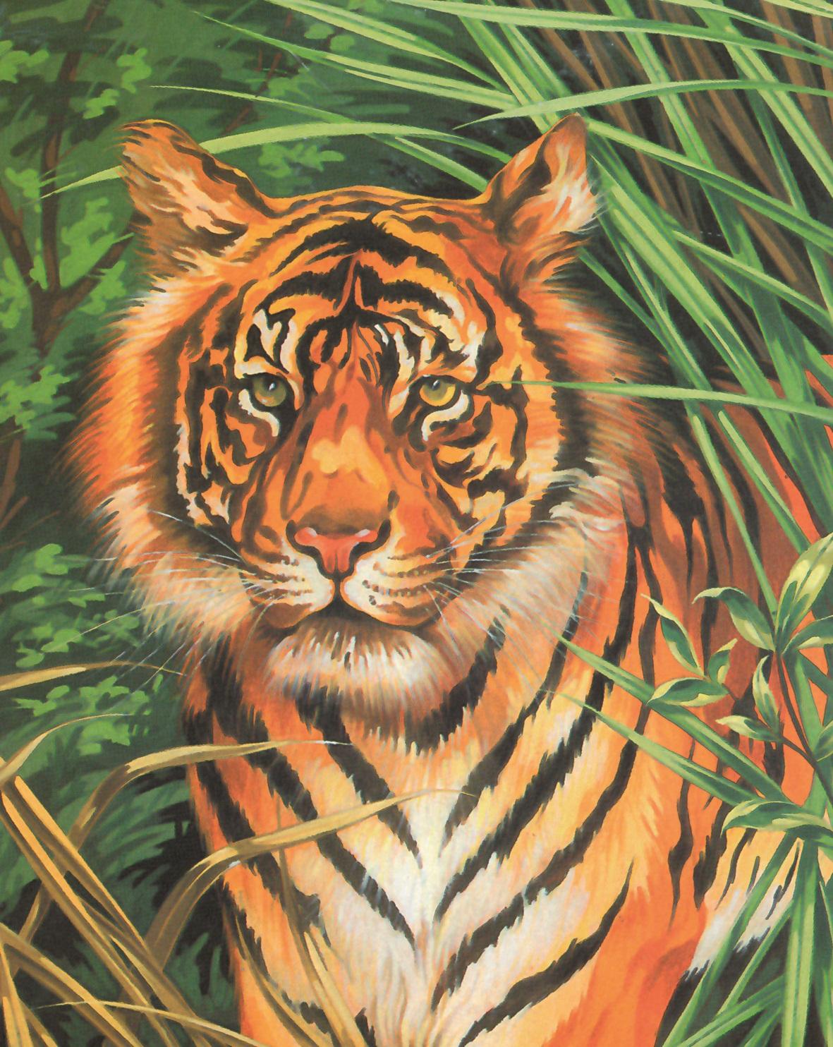 tiger spiele online
