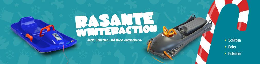 xB 2015-11 Schlitten & Bobs