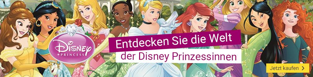 xB 2017-11 Disney Princess